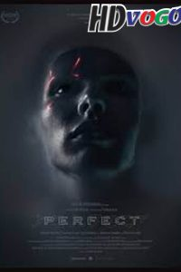 Perfect 2018 in HD English Full Movie